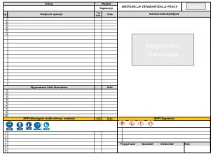 Karta Standaryzacji (przykład za FlowVision Consulting)